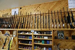 firearms home picture